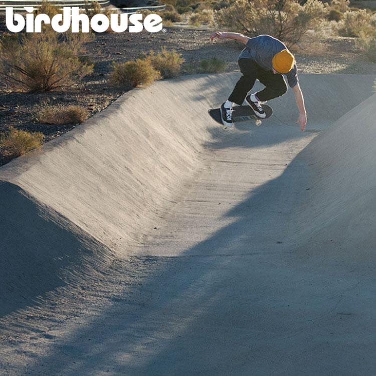 birdhouse_skateboards_2016_2