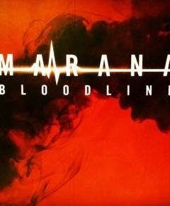 etnies - Marana Bloodline Collection - Jesień 2014